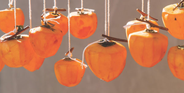 Hoshigaki: Dried Persimmons at Home